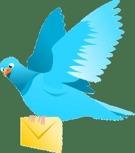 pigeon communicating